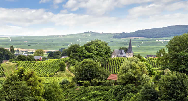 Properties for sale in France -  Champagne-Ardenne.